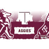 Stainless Steel Tumbler, Texas A&M Aggies Knockout