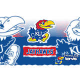 Stainless Steel Tumbler, Kansas Jayhawks Knockout