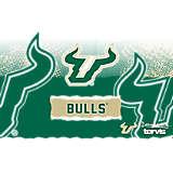 Stainless Steel Tumbler, USF Bulls