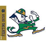 Notre Dame Fighting Irish Leprechaun Colossal