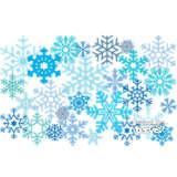 Stainless Steel Tumbler, Snowflakes
