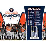 MLB® Houston Astros™ 2017 World Series Champions Player