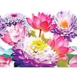 Floral Filter