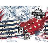 Harley-Davidson - American Flag