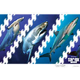 Discovery - Shark Week Photos (Limited Edition)