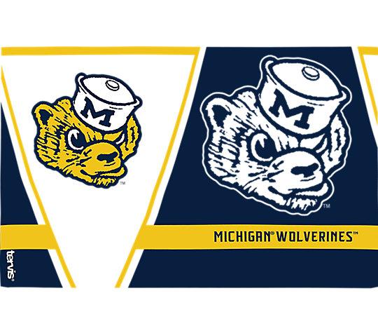 Michigan Wolverines Vault image number 1