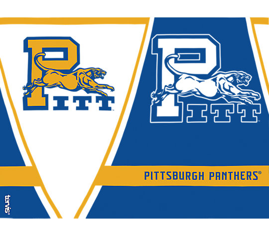Pittsburgh Panthers Vault image number 1