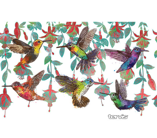 Colorful Hummingbirds image number 1