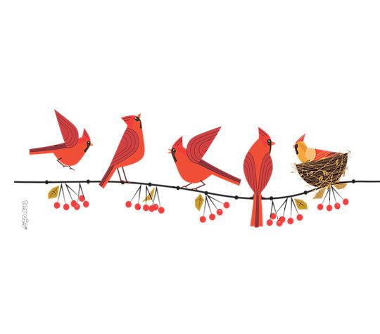 Cardinals image number 1