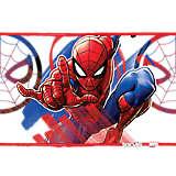 Marvel® - Spider-Man Iconic