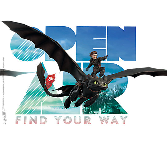 DreamWorks How To Train Your Dragon - Find Your Way