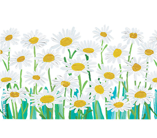 Painted White Daisies image number 1