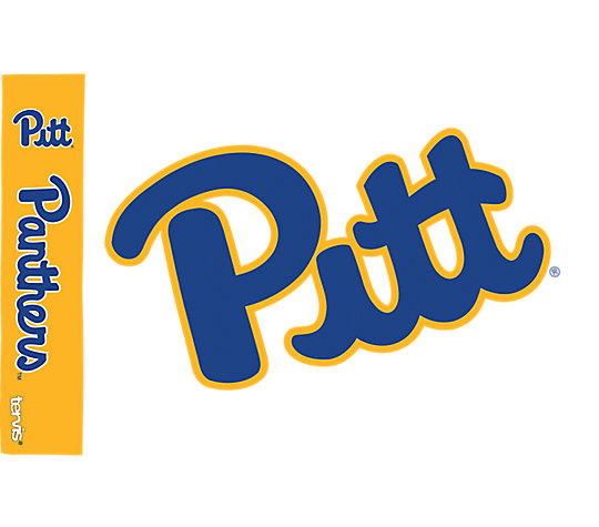 Pittsburgh Panthers Colossal image number 1