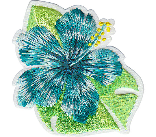 Island Teal Hibiscus image number 1